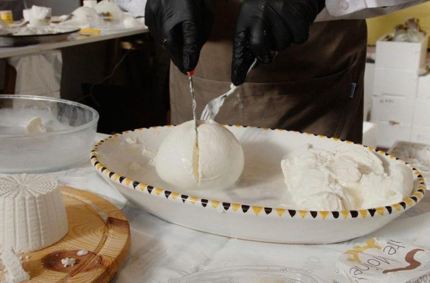 Fattorie Garofalo acquisisce Fattoria Apulia per 30 milioni. Finanziamento da UniCredit e Intesa Sanpaolo