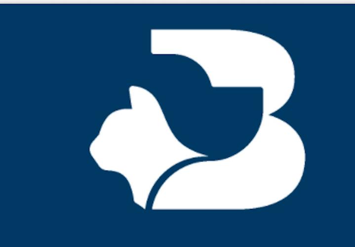 NB Aurora insieme a F&P4BIZ rileva il controllo di BluVet